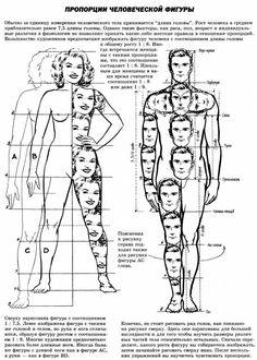 Под музыку дождя: Пропорции человека (основы моделирования куклы) ..
