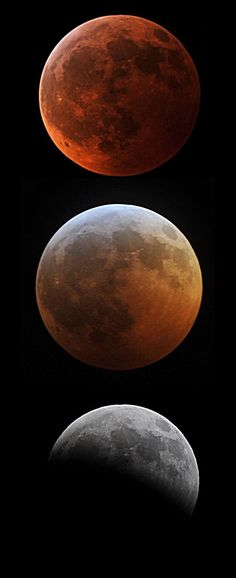 """Everything You Need to Know About This Month's """"Super Blue Blood Moon"""""""