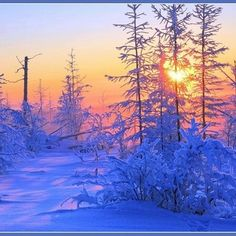 Sunrise in Norway I Love Winter, Winter Time, Never Summer, Colorful Trees, Amazing Sunsets, Winter Beauty, Gods Creation, Winter Scenes, Scandinavian Style