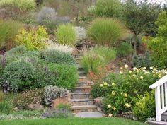 hillside garden | Hillside Decoration