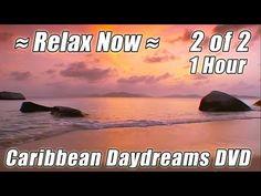 Pin by Jennie McBride on Beach/Relax Videos | Beach relax, Ocean