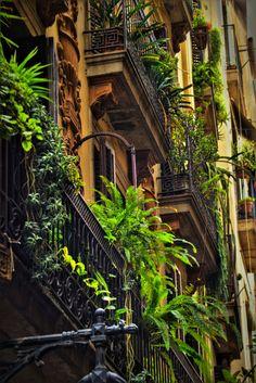 Green balcony environment in Barcelona (Catalunya - Catalonia)