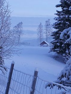 Heimlaga av fru Rønning: Galleri Monet, Snow, Outdoor, Outdoors, Outdoor Games, Outdoor Living, Bud, Let It Snow