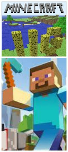 Minecraft video game tour