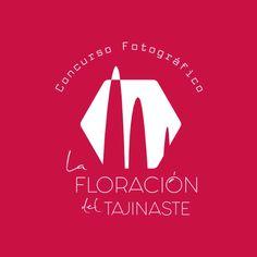 Ya puedes presentar tus fotografías en el concurso «La floración del Tajinaste»