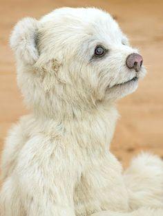 Three O'Clock Bears Teddy Bear Named Oggie