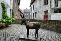 Ezeltje in Maastricht