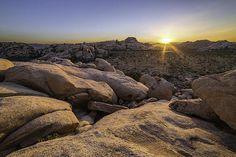 Joshua Tree National Park is a photograph by Thomas Zagler