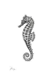 Original Animal Drawing by Igor Pose Seahorse Drawing, Seahorse Tattoo, Seahorse Art, Sea Tattoo, Ocean Tattoos, Sea Life Tattoos, Seahorses, Tattoo Sketches, Tattoo Drawings