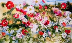 poppies at flanders field, water color by kay smith