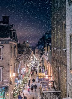 christmas scenes Christmas Lights by Lee Bodson (Quebec City, Canada) French Christmas, Christmas Art, Winter Christmas, Christmas Lights, Xmas, Winter Szenen, Winter Time, Snow Pictures, City Wallpaper