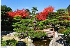 Japan Fall Leaves Calendar 2018 - Seasonal Forecast And Best Spots! Japanese Landscape, Japanese Gardens, Fukuoka Japan, Travel Sights, Visit Japan, Tourist Places, Travel Channel, Grand Tour, Historical Sites