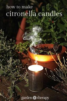 How to make citronella candles from cans and recycled wax.