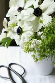 Bouquet of the Week: Splurge on Black and White Anemones - Gardenista White Anemone, White Flowers, Fresh Flowers, Beautiful Flowers, Daffodils, Pansies, Spring Flowers, Spring Colors, Flower Power
