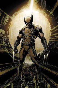Wolverine ( X-Men ) // Marvel // New Comics