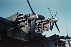 FalkeEins - The Luftwaffe blog : Bv 138