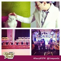 Catsparella has the behind the scenes scoop on our #FancyNYFW event. Read it on her blog!