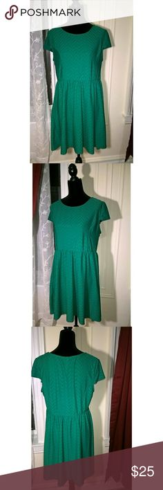 "Xhilaration Cute Green Skater Dress 2X Beautiful, slightly above knee green skater dress. Perfect for summer Length 33"" Waist 18"" has a lot stretch because of elastic waist band New without tags. Never worn. No flaws Dresses Midi"