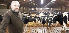 - I denne stald på Fyrstedgyden i Balslev har vi 338 køer og opdræt - nogenlunde ligeligt fordelt på den gamle Rød Dansk Malkerace og Jysk Kvæg, fortæller Stig Benzon.(Foto: Anders Kurt Simonsen ©)