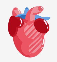 قلب ينبض رسم كاريكاتوري تصوير عضوي الأعضاء البشرية أعضاء الجسم أعضاء مجسم دم أحمر الضرب قلب الجهاز قلب نابض التوضيح الكرتون توضيح الجهاز Png وملف Psd Heart Illustration Illustration Art