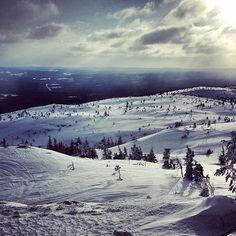 Карелия. Karelia. KareliaLive