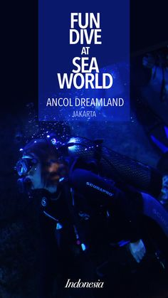 Do you know that you can do fun dive at Sea World Ancol Jakarta?