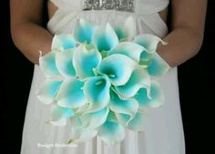 Love me some calla lillies