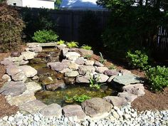 Washington Home and Garden | Ponds & Waterfalls     100 Gardening Tips Utilize These Tips to Build A Beautiful Garden Today  http://gardeningtipsfreebooks.blogspot.com/