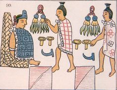 Pipiltin were the noble social class in the Aztecs. They claimed they were descendants of the Toltecs. They emerged from a capulli (sort of like a manor) and given special clothing and symbol of ranks. They also controlled military, priesthood and occupied top positions.