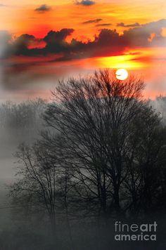 ✮ Foggy Morning Sunrise in Ky