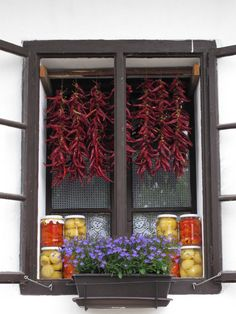 """Paprika and pickled goods (white """"apple"""" peppers and peppers stuffed with cabbage) displayed in window, Hungary, Europe"""