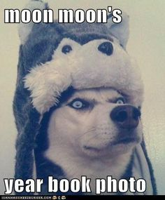 I love anything related to moon moon! This is so funny! Ha :)