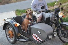 sidecar dogs - Google Search