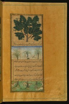 Illuminated Manuscript of the Baburnamah, Walters Art Museum Ms. W.596, fol. 28b. Written originally in Chaghatay Turkish and later translated into Persian, Bāburnāmah is the story of a Timurid ruler of Fergana (Central Asia), Ẓahīr al-Dīn Muḥammad Bābur (866 AH /1483 CE - 937 AH / 1530 CE), who conquered northern India and established the Mughal Empire