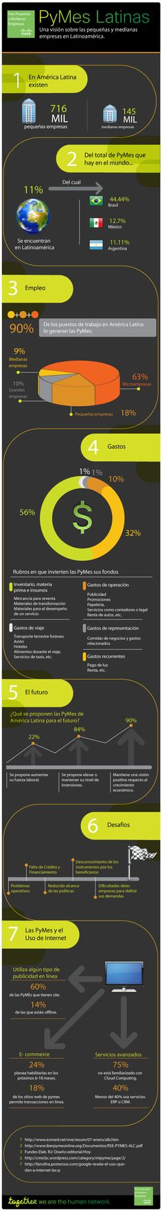 Las #PYMEs en latinoamerica (Infografia)