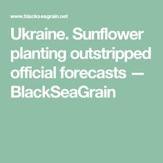 Ukraine. Sunflower planting outstripped official forecasts  — BlackSeaGrain