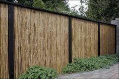 bamboo fence - Cerca con Google Cheap Privacy Fence, Privacy Fence Designs, Backyard Privacy, Diy Fence, Backyard Fences, Garden Fencing, Backyard Landscaping, Backyard Ideas, Fence Gate