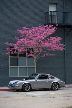 static-panic:  The one and only Magnus Walker.