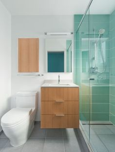 Oakland Home - modern - bathroom - san francisco - by Lignum Vitae  Really like the color in the shower.