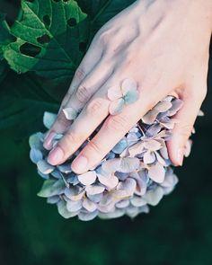 Grass Flower, Hydrangeas, Flowers, Earrings, Aesthetics, Gardens, Hands, Beautiful, Wallpaper