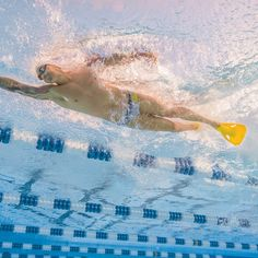 This set is for all the stroke sprinters and IMers out there! Focusing on killer breakouts, fast legs, powerful finishes, and fine tuning a controlled speed. Workouts For Swimmers, Swimming Workouts, University Of The Pacific, Olympic Gold Medals, Training Tips, Olympics, Coaching, Around The Worlds, Sport