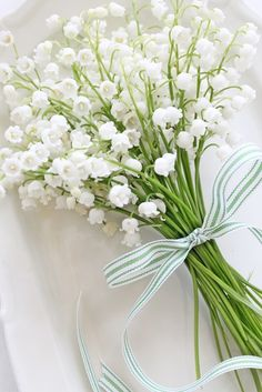 Lily of the Valley tied posy