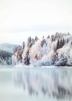 """""""Cold feet's and heart beats💙"""" in Mörsil, Jämtland, Sweden by Marléne I Love Winter, Winter Snow, Green Christmas, Minimal Christmas, Simple Christmas, Christmas Tree, Winter Magic, Snow And Ice, Winter Pictures"""