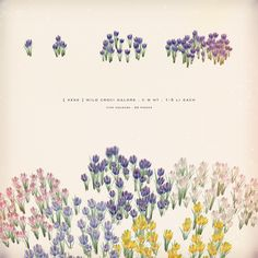 https://flic.kr/p/T5R5wG | [ keke ] wild croci galore | ★ out for Lost & Found tomorrow click to lost & found