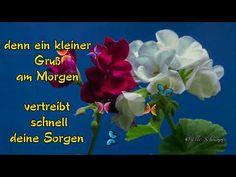 Guten Morgen Gruß für dich - ich wünsche dir einen schönen Tag - Good morning greeting for you - YouTube