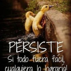 Yea true ,hay q persistir. Bible Quotes, Me Quotes, Funny Quotes, Smart Quotes, Famous Quotes, Comic Foto, Spanish Quotes, Spanish Memes, Positive Thoughts