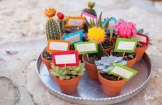 Use Plants as Favors | Although you want to send your guests home with something to remind them of the good time they had chez vous, you dont always have the time (or cash) to order monogrammed flasks. Opt for an environmentally friendly alternative and hand out tiny potted plants, like cacti or herbs.