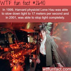 Lene Hau, the woman that stopped the light - WTF fun facts