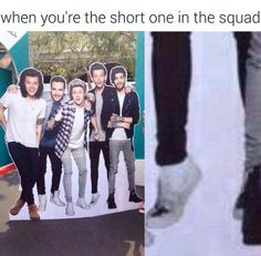 so if louis is the shortest one and he's 5'8, how freaking tall are the others?? he's already 8 inches taller than others