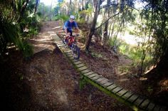 Santos Mountain Bike Park in Ocala, Florida